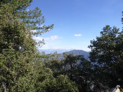 Mt Wilson Trail 11-28-15