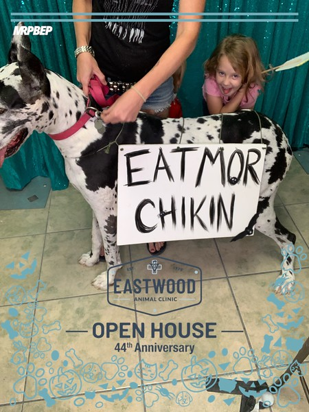 Eastwood_Animal_Clinic_photo_96.jpeg