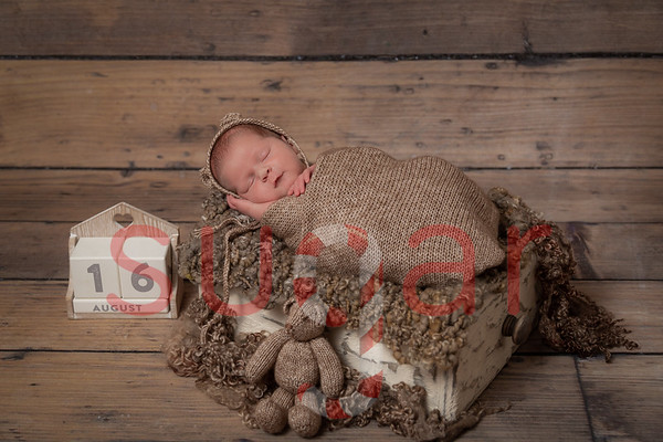Coby's Newborn Photoshoot