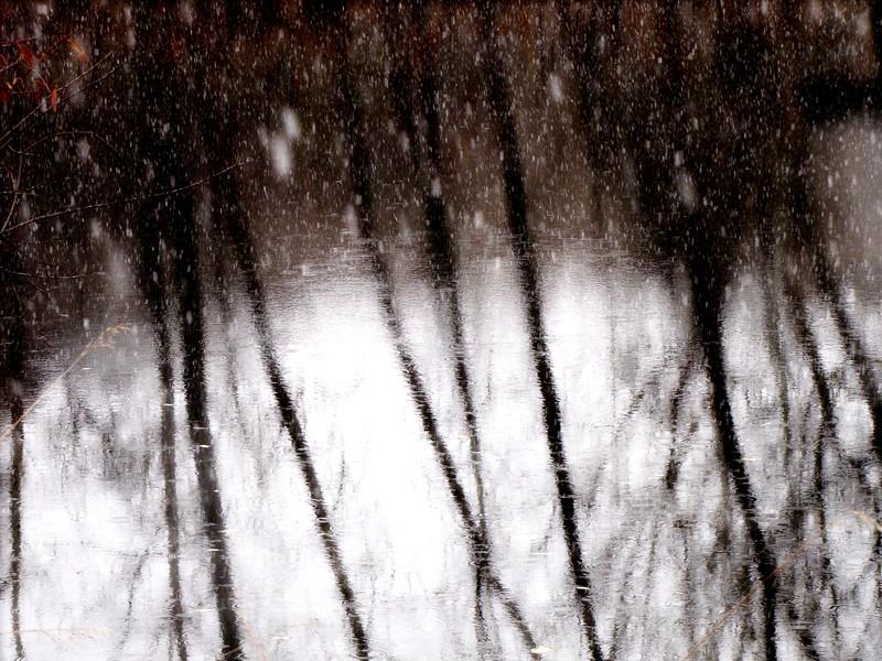 amh PARKS & WATER (423).jpg