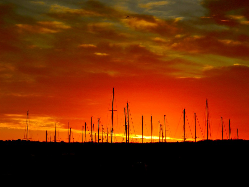 masts:sunset.jpg