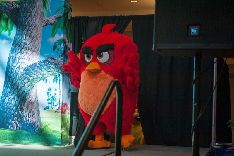 Angry Birds StoneCrest Mall 31.jpg