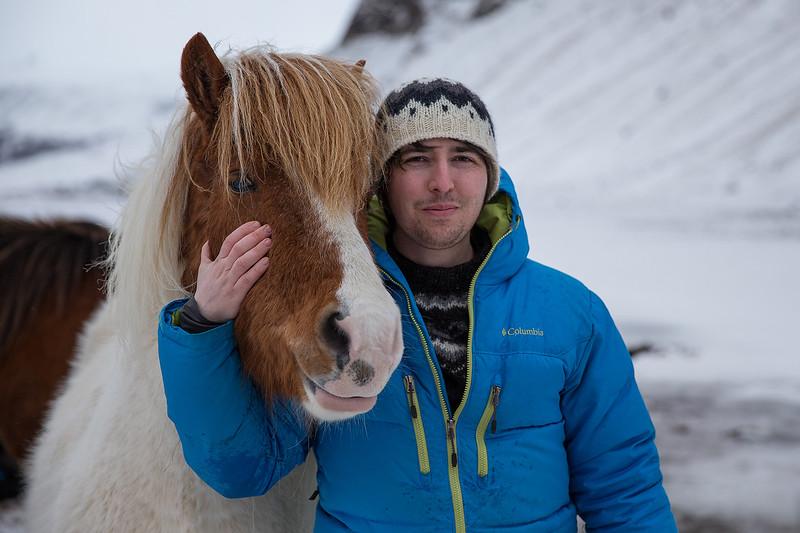 iurie_horse.jpg