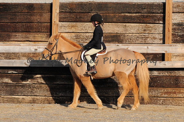 102-Walk-Trot Eq