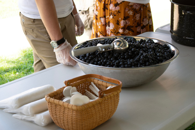 Blueberry_Festival-8455.jpg
