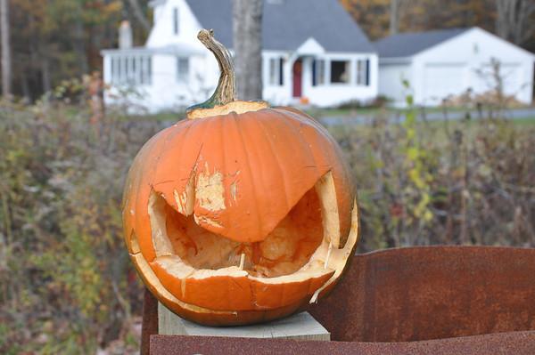 Pumpkins on Parade [Fall 2013]