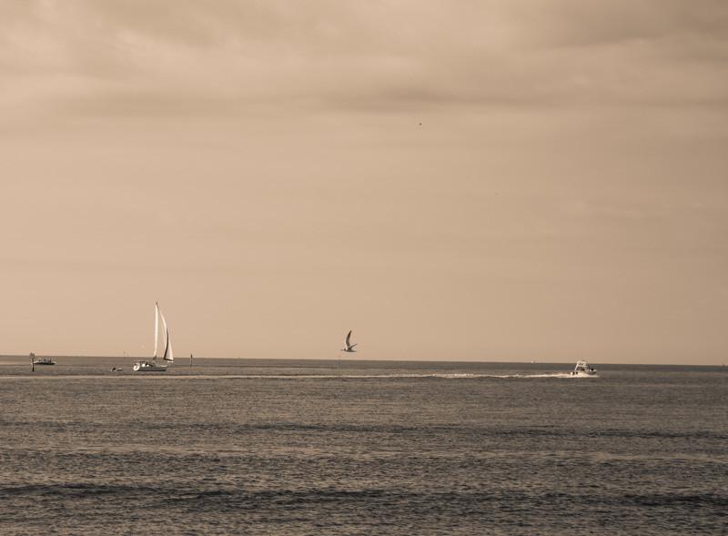 Saint Pete Beach 17