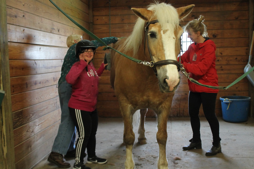 . Kathy Habat,  a client  at The Willoughby Branch helps groom a horse before riding as part of the equine therapy sessions clients of  Lake County\'s Board of Developmental Disabilities/Deepwood regularly participate in  at Fieldstone Farm.  Kristi Garabrandt - The News -Herald