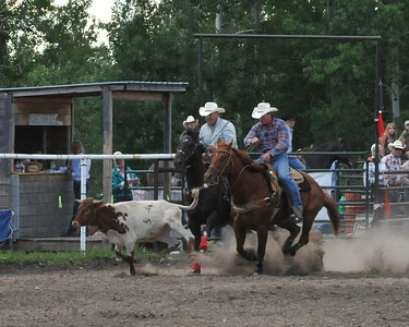 Steer Wrestling (Section 2)