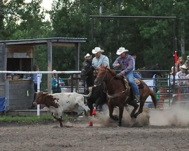 Steer Wrestling (Section 2)
