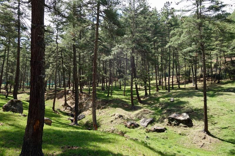 Thimphu zoo park