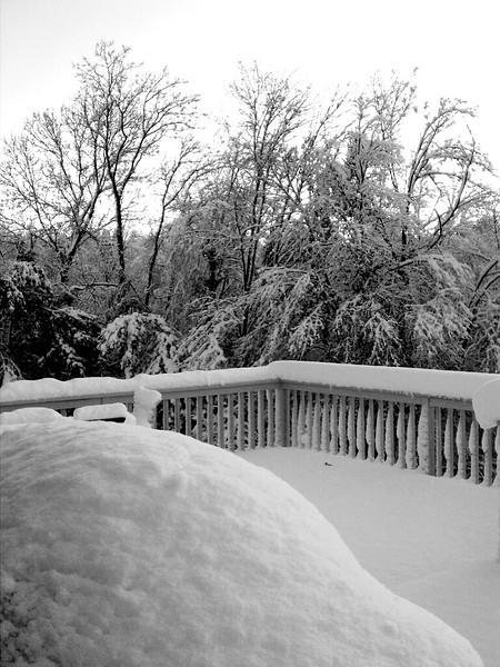 October 29, 2011 snow storm