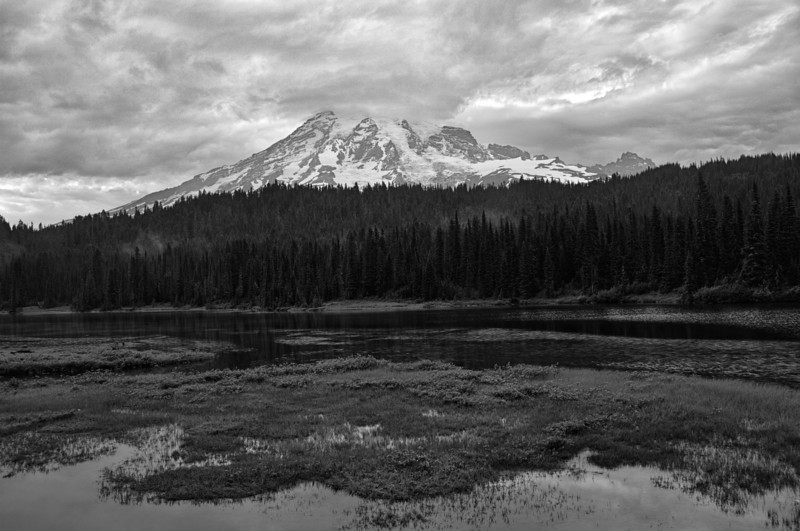 20 Aug 13.  One normally visits Reflection Lakes in Mt Rainier National Park with the goal of finding the mountain reflecting perfectly clear on an absolutely flat lake surface. And one is frequently disappointed if that is the only image acceptable. Over the years of visiting Reflection Lakes I've encountered the perfect conditions only once, but I've never come away disappointed with what I got when I visited. Each and every visit has been a different view of the mountain and its reflection, and with just a bit of effort, regardless of the conditions provided by Mother Nature, there has always been a good to great picture awaiting me. Our visit there the day of the storm was no exception, and we had two different opportunities to take some stunning photos as long as we were willing to work with what we had. Now it is pretty hard to beat stormy conditions, and those afforded us that day were nothing less than spectacular. This is a shot just as the storm abated with the clouds still raging above and the mist rising out of the dell. The light was stark, but still quite bright, and the wind had quieted down, so hand holding was still an acceptable approach for the conditions. I've converted the original to B&W so that you are working more with textures and contrast vice color which I hope will force you to take a few moments to really look the image over carefully. My monitors are giving me different results for the large image but a consistent view for the smaller edition. Those of you receiving the larger image may notice a lot of noise in the clouds, something that shows up on only one of my 3 monitors. Not sure why, and it is not present in the smaller image. Nikon D300s; 18 - 200; Aperture Priority; ISO 400; 1/160 @ f /11.