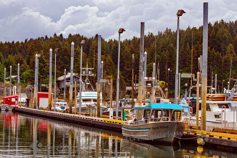 Seldovia Boat Harbor - Judith Sparhawk