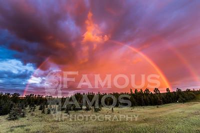 Sunrise Rainbow Near Tumbler Ridge