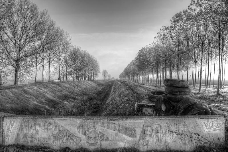 Poplars with Tyres - Sant'Agata Bolognese, Bologna, Italy - November 18, 2011