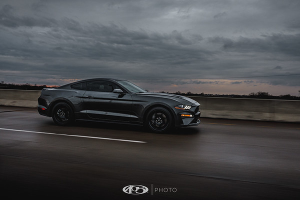 Chris Maddocks - 2020 Ford Mustang GT 5.0