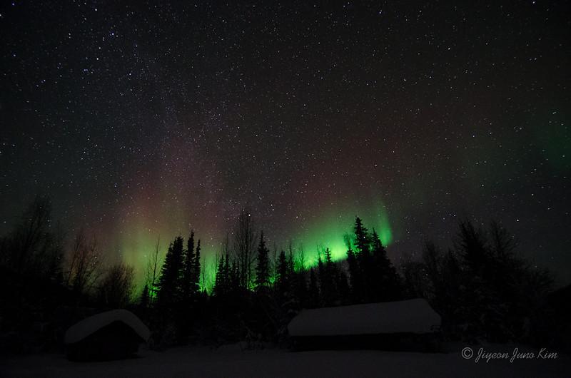 USA-Alaska-Wiseman-Aurora-2706.jpg