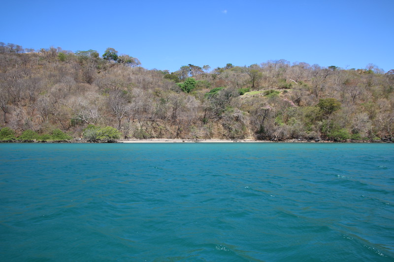 2020 Costa Rica 0763.JPG
