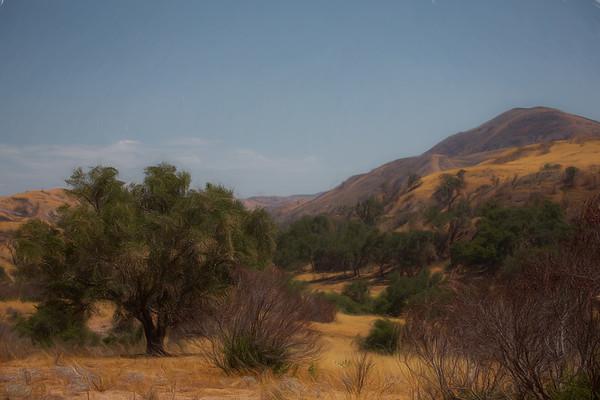 Silverado Canyon Backyards