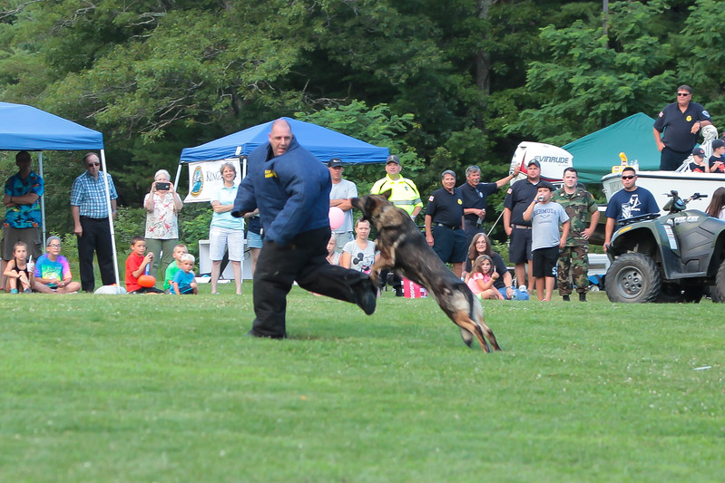 """K-9 dog launches himself to take down the """"bad guy"""" during the K-9 demonstrations at the National Night Out event."""