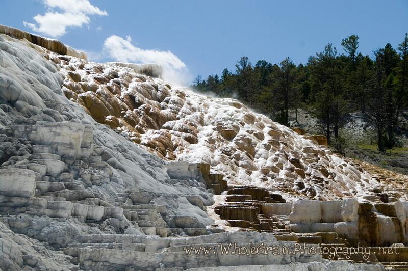 20100713_Yellowstone_2814_1.jpg