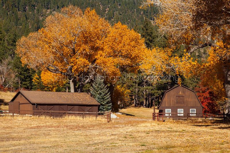 Barn ~ Franktown Rd #2 ~  Washoe Valley Nevada