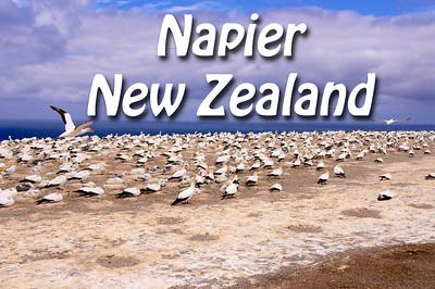2013 02 22 | Napier