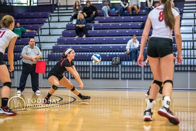 Volleyball Washington and Jefferson vs Chatham