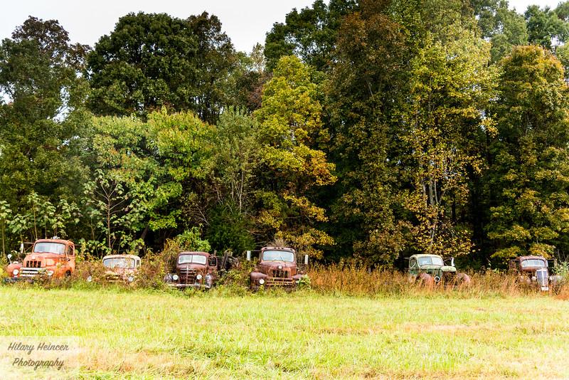 Truck Graveyard-620.jpg