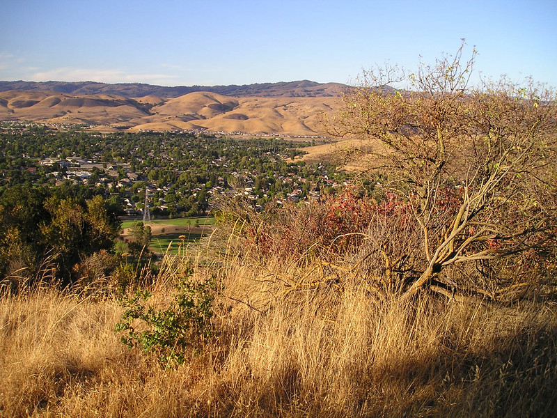 Now we're REALLY going uphill. It's a workout. Views across southeast San Jose are looking good.