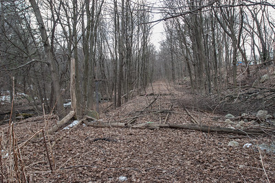 Rail Trail Tracks, Red Wing Farm, Lime Quarry
