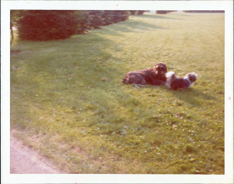 1974 Teagan Utsi.jpg