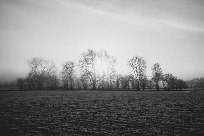 A frosty start (2 of 20).jpg