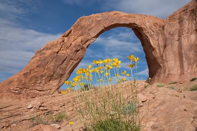 Corona Arch/Moab/Utah - May, 2016