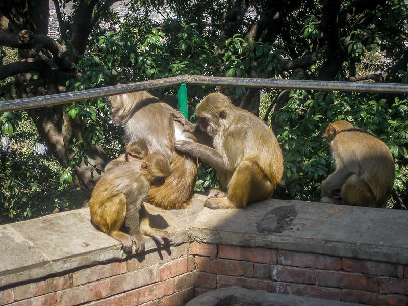 Swayambhunath 009.jpg