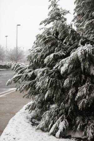 December-2011-Snow