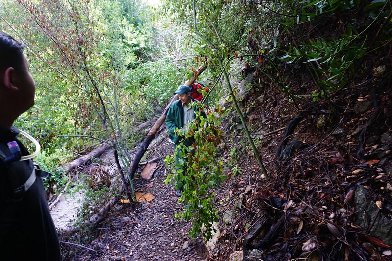 20160218061-Gabrielino Trail Scouting.JPG