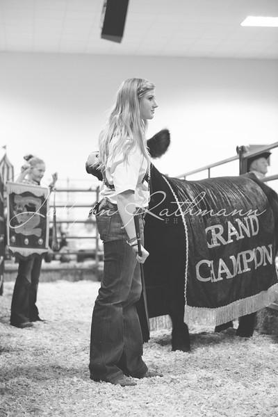 Junior Livestock Auction Backdrop