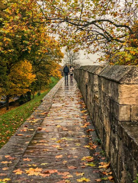 York autumn and lights-2.jpg