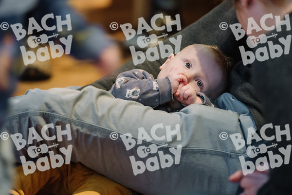 © Bach to Baby 2017_Alejandro Tamagno_Balham_2018-01-13 029.jpg