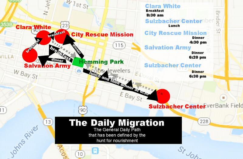Dailymigration.jpg