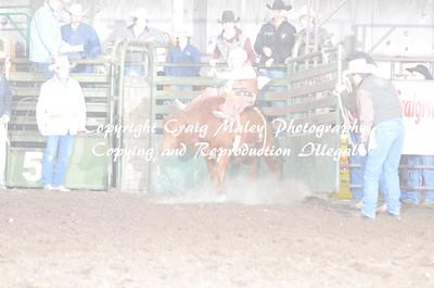 Steers Bareback 04-25-15