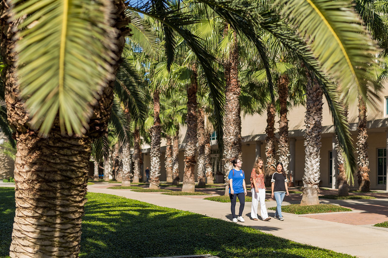 TAMU-CC international students on campus.