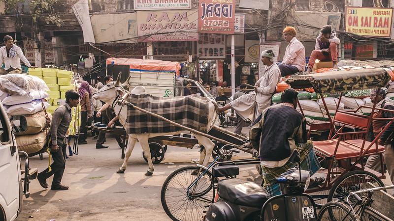 Delhi Bazaar-5.jpg