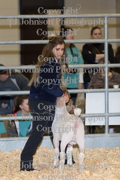 2018 KISD Goat Show Class 1