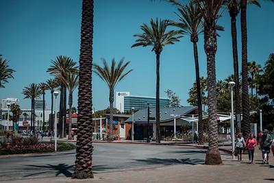 Long Beach Aquarium 2016
