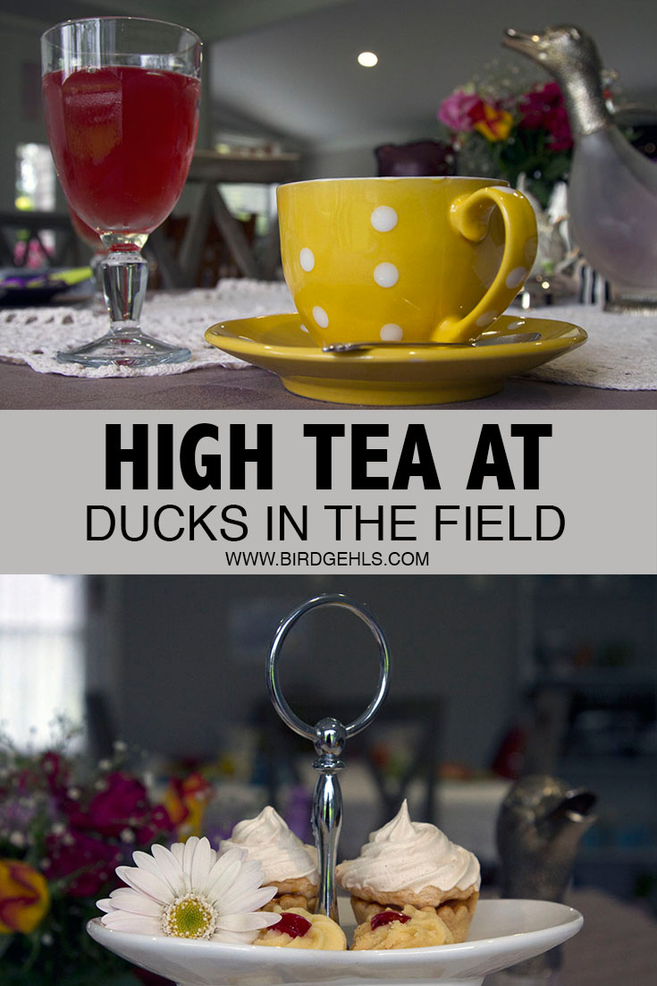 Hanging around the Hunter Valley in Australia and feeling peckish? Ducks in the Field near Maitland is fun, tasty and affordable. Perfect for any fan of high tea.