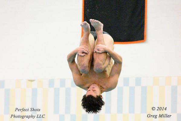 Men's 1 Meter 6 Dives
