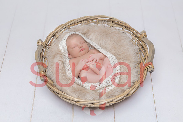 Noah's Newborn Photoshoot